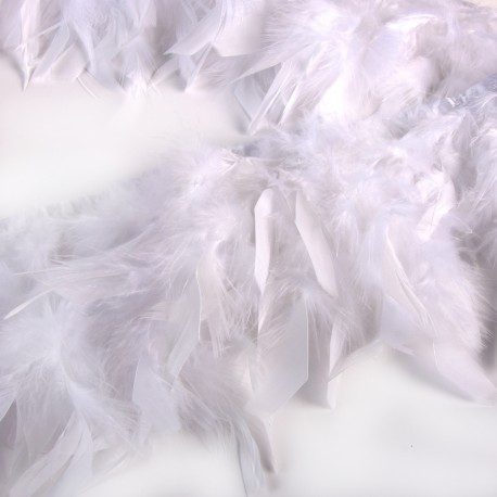 Feathers per meter