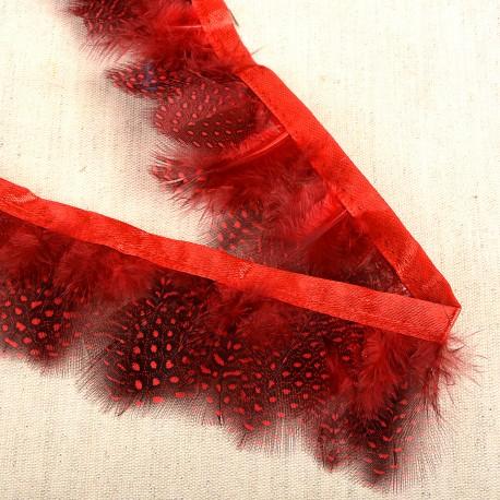 Feathers On Satin