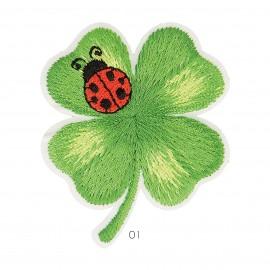M Patch Ladybird Clover